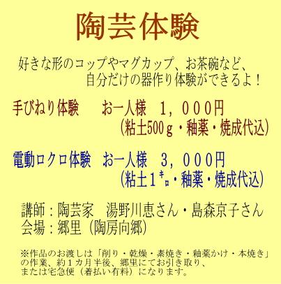 taiken2013.jpg